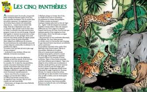 les-3-pantheres-wakou-nov-2015